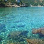 Sea Bandiera blu